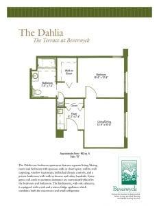 The Dahlia