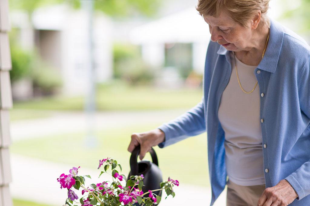 gardening at The Glen Eddy